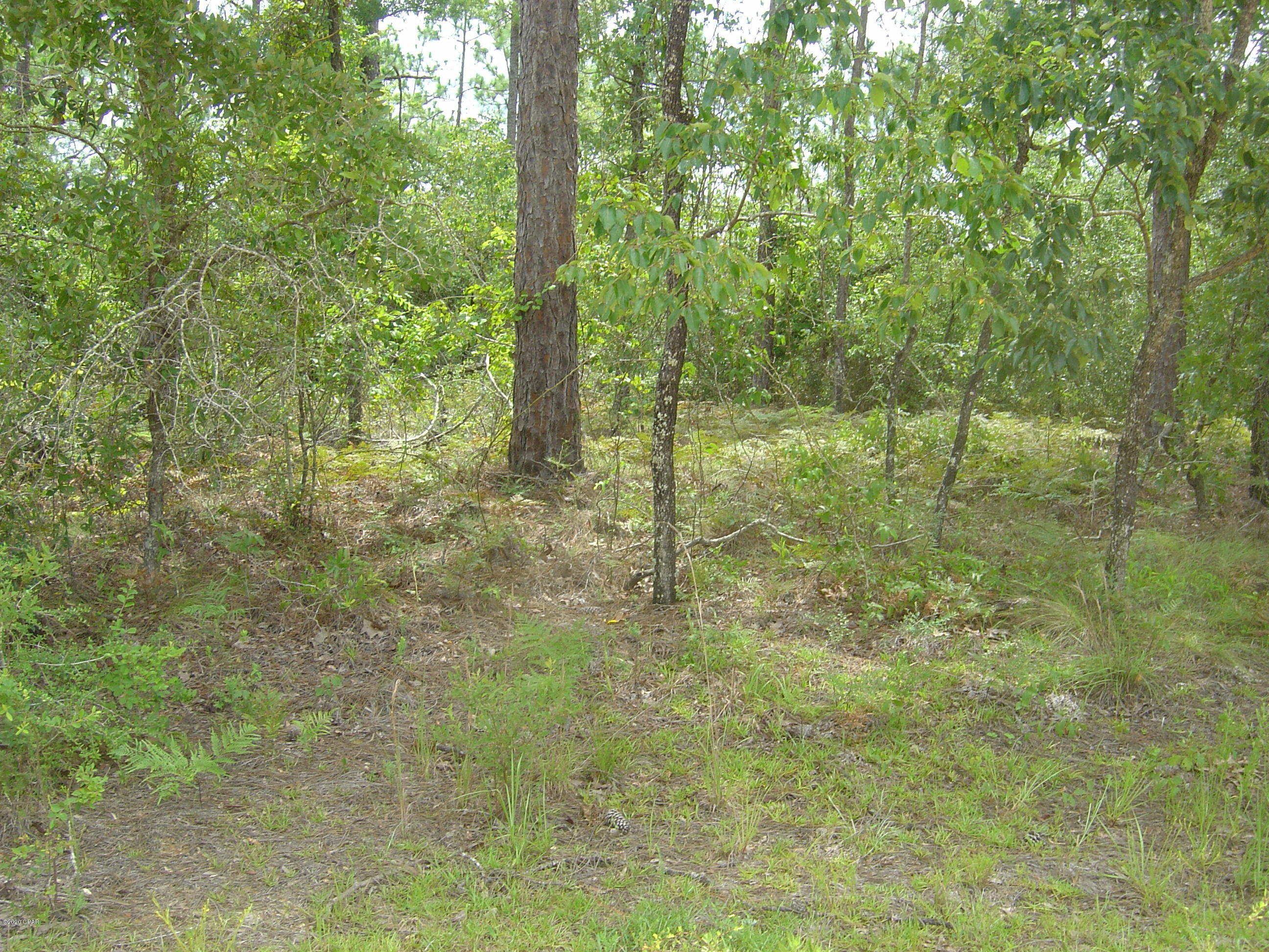 Main photo of property